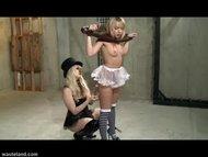 Alice in BDSM Wonderland