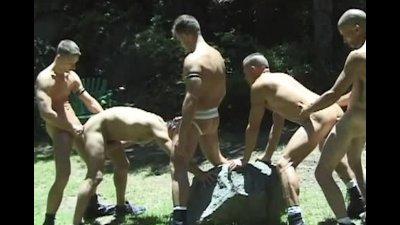 Orgy In My Backyard