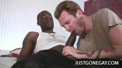 Gay porn video tubes