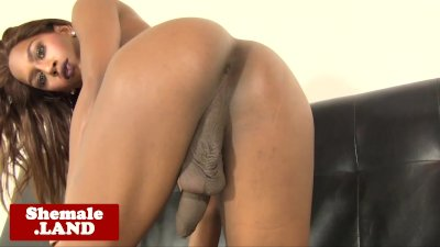 Trans chocolate goddess Mya strips and jerks
