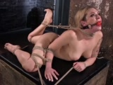 dahlia sky submits to torment in punishing bondagePorn Videos