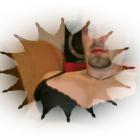 zoki.vajs's profile image