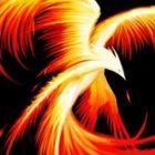 firesolis999 Avatar image