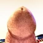 lovestospooge3's profile image