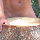 locura13's profile image