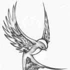 austien's profile image